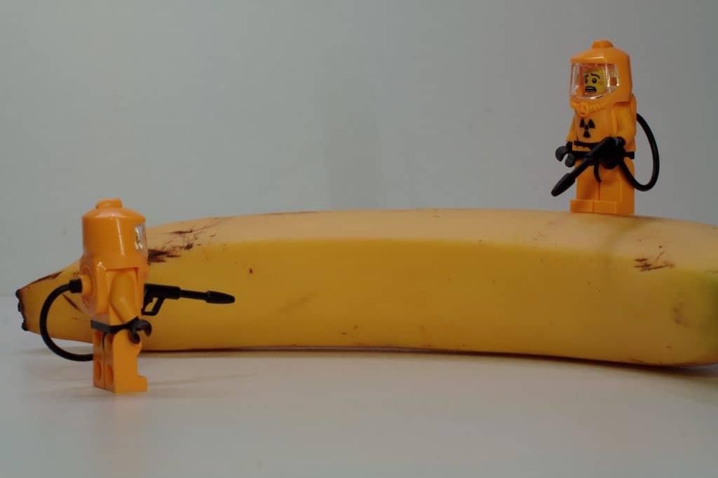 Bananas radioativas? Foto por Martin van der Streeck em https://www.flickr.com/photos/bananas-radioativas-flickrtreenaks/5869671221/